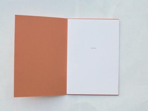 LIVRE audio, 2008. Booklet img1